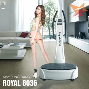MS Đứng TV-Gold Royal-8036